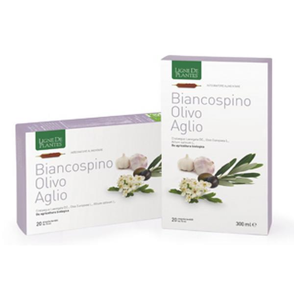Biancospino olivo aglio ampolle ligne de plantes natura for Ligne de plantes
