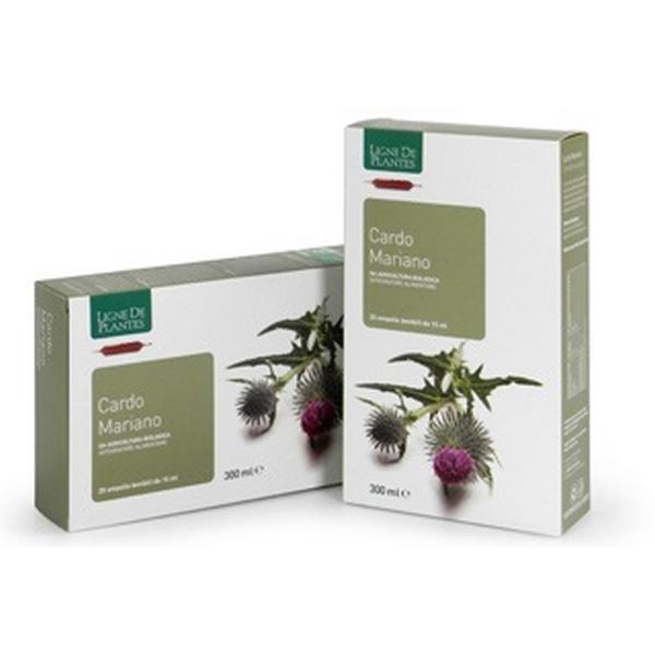 Cardo mariano ampolle ligne de plantes natura service for Commander des plantes en ligne